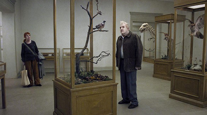 Un pigeon perché sur une branche philisophait sur l'existence